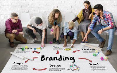 Branding, el manual d'aplicacions i els estils de la imatge corporativa.